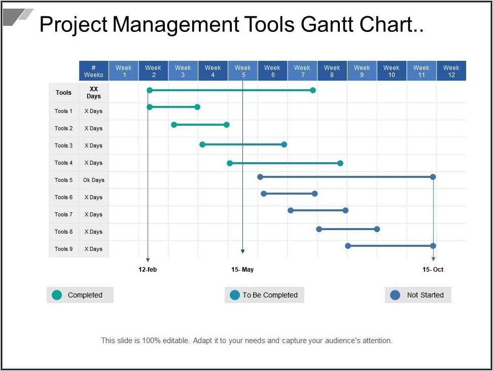 Sample Project Gantt Chart Template