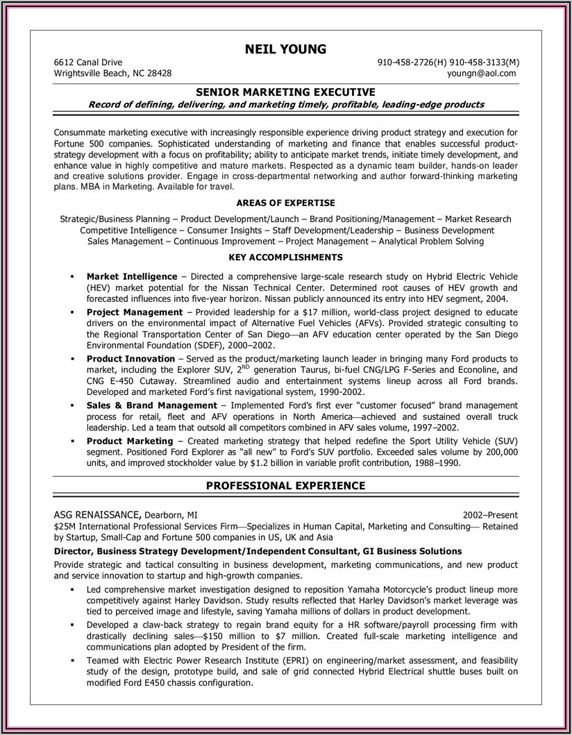 Security Company Business Plan Template Doc