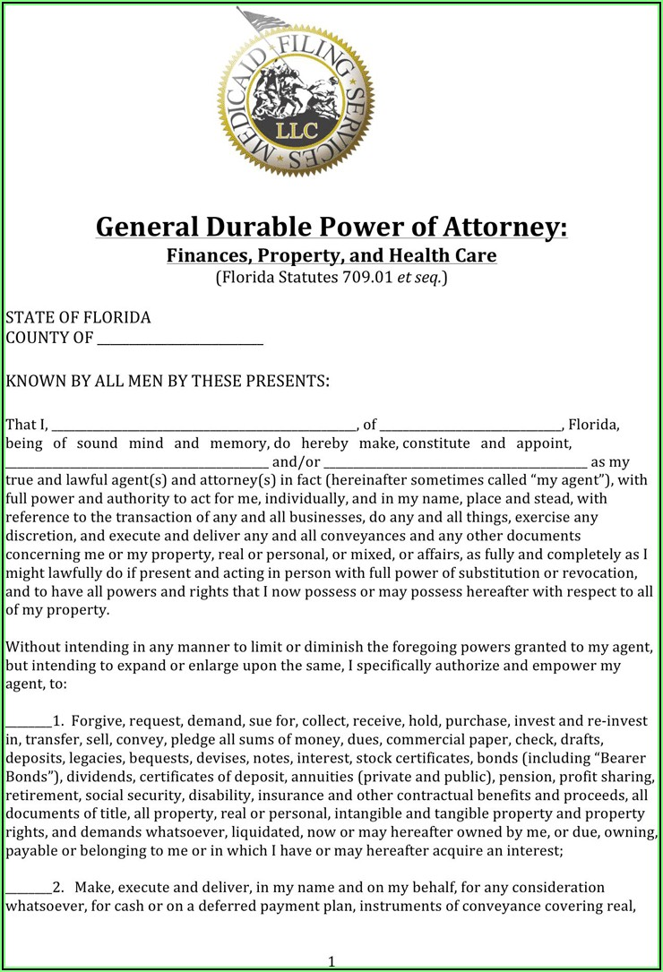 Business Power Of Attorney Form Florida