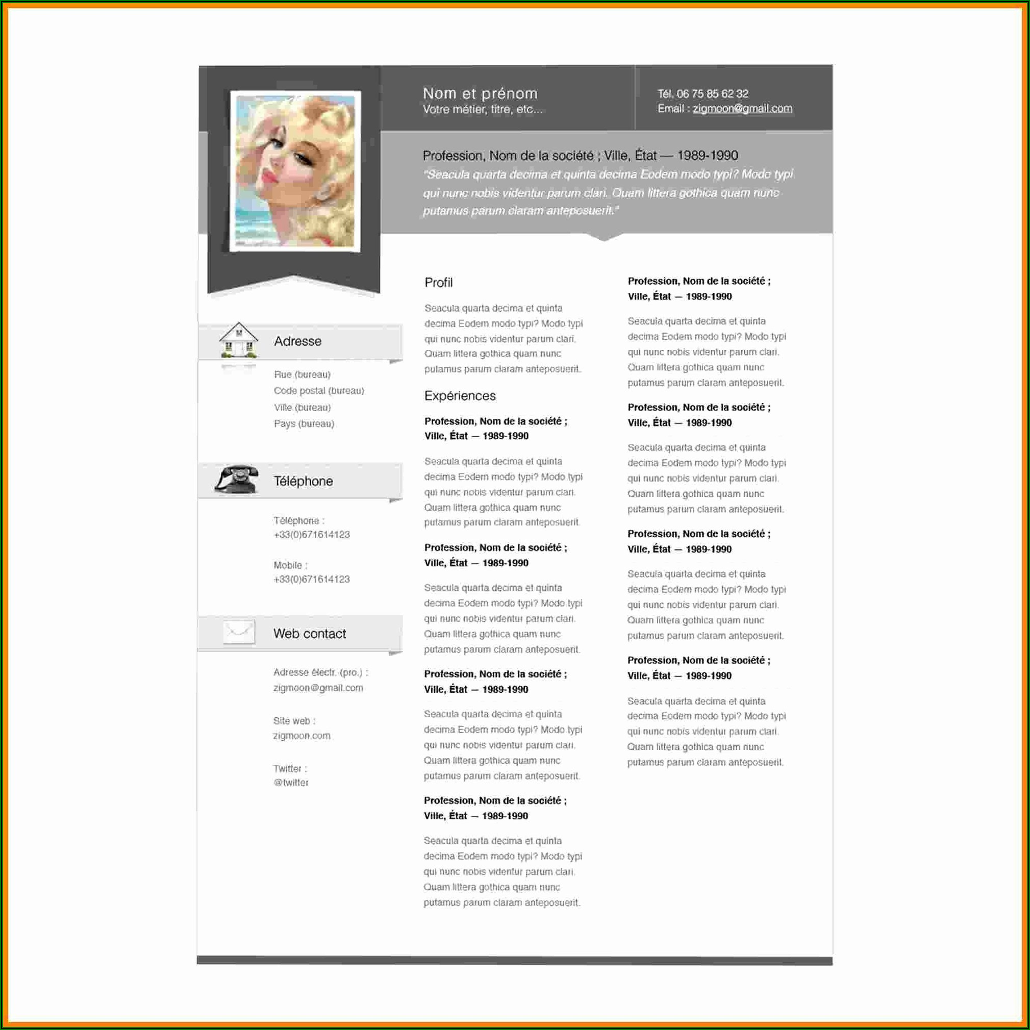 Free Resume Templates Mac Pages
