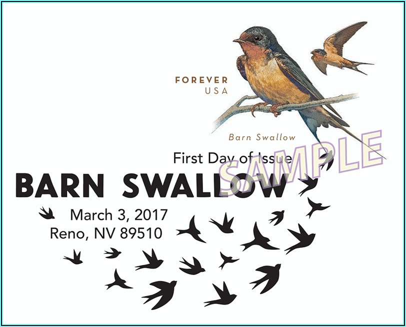 Pre Stamped Envelopes Barn Swallow