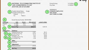Adp Pay Stub Template Word Document