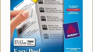 Avery Address Labels 5160 Template Open Office