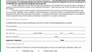 Background Check Form Template Free