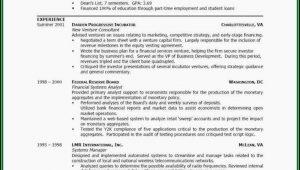 Beautiful Resume Templates Microsoft Word
