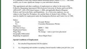 Beautiful Resume Templates Online