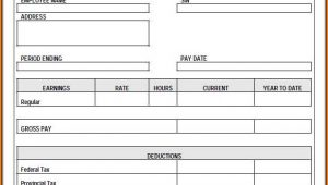 Blank Pay Stubs Template Pdf