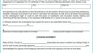 Blank Power Of Attorney Form Ohio