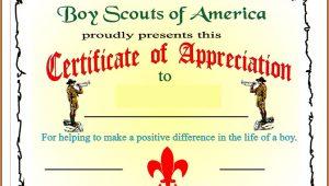 Boy Scout Certificate Of Appreciation Templates