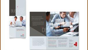 Business Brochure Templates Word