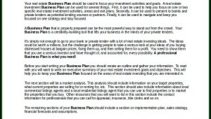 Business Plan Examples For Investors