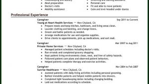 Caregiver Resume Template Free