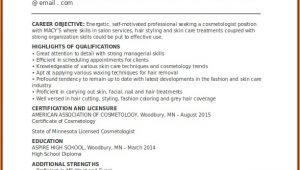 Cosmetology Resume Templates Free