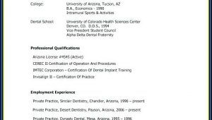 Curriculum Vitae Samples Templates