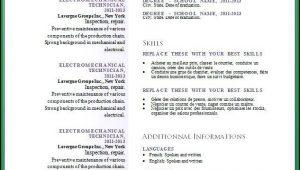 Curriculum Vitae Template Free Doc