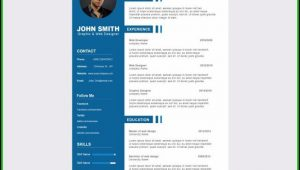 Curriculum Vitae Template Free Download Psd