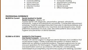 Dental Assistant Resume Template