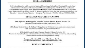 Dental Hygienist Resume Template