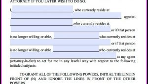 Durable Power Of Attorney Form California Template