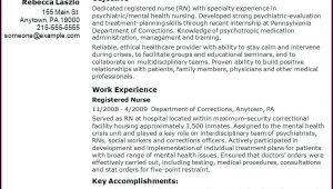 Examples Of Travel Nurse Resumes