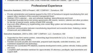 Executive Resume Examples 2016