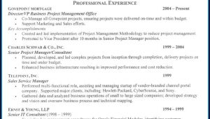 Executive Resume Examples Free