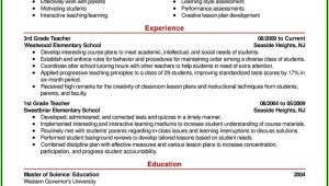 Executive Resume Styles Examples