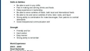 Free Bartender Resume Builder