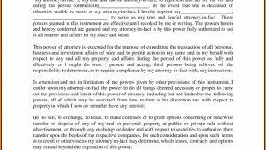 Georgia Power Of Attorney Form Pdf