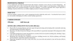 Google Resume Builder Review