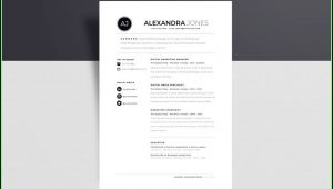 Minimalist Cv Template Free Download