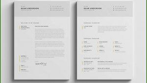 Minimalist Resume Template Psd Free Download