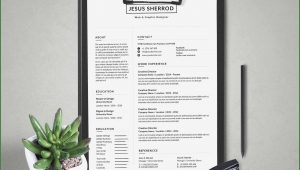 Modern Cv Template Word Free Download 2018