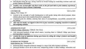 Resume For College Graduate Template