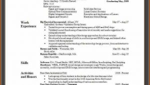 Resume For Dummies Template
