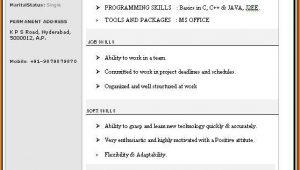 Resume Format Free Download