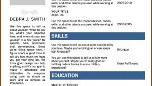 Resume Format Free Download In Ms Word 2010