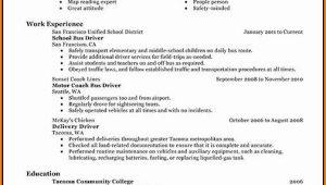 School Bus Driver Resume Template
