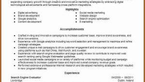 Search Engine Evaluator Resume