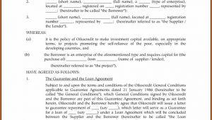 Shareholder Loan Agreement Template Hong Kong