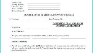 Temporary Child Custody Form Florida