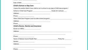 Temporary Child Custody Form Texas