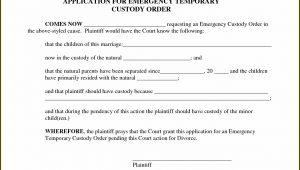 Temporary Child Custody Forms