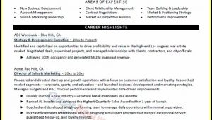 Top Executive Resume Services