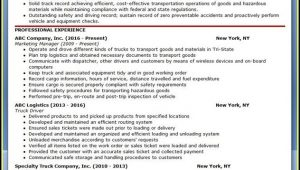 Truck Driver Resume Word
