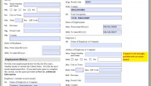 Us Fiance Visa Application Form