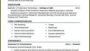 Veterinary Assistant Resume Template