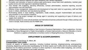Warehouse Executive Resume Sample